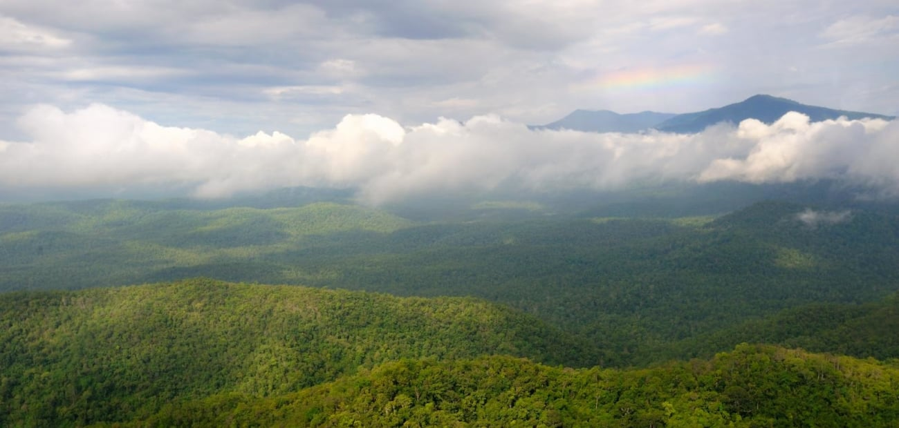 Panoramic-view-of-the-Cardamom-Mountains-Cambodia-Jeremy-Holden_1300x620_acf_cropped